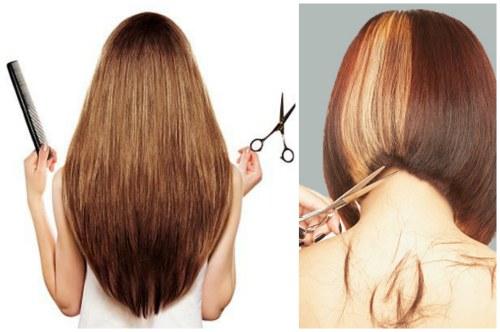 Где пункт приема волос в Краснодаре дорого.